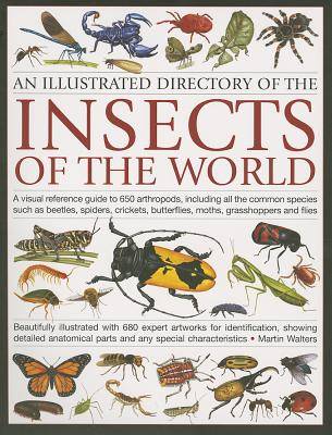 An Illustrated Directory of the Insects of the World By Walters, Martin
